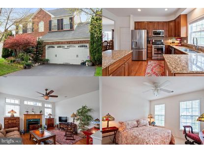 25462 BRIGHT COURT Aldie, VA MLS# VALO435058