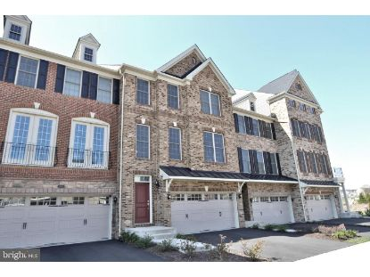 25009 CAMBRIDGE HILL TERRACE Chantilly, VA MLS# VALO435122