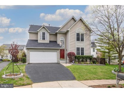 42990 BLUENGREY COURT Ashburn, VA MLS# VALO435484