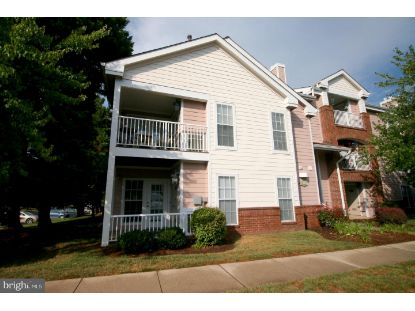21009 TIMBER RIDGE TERRACE Ashburn, VA MLS# VALO435798