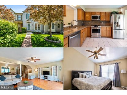 20930 PIONEER RIDGE TERRACE Ashburn, VA MLS# VALO436542