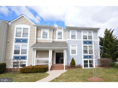 44086 NATALIE TERRACE Ashburn, VA MLS# VALO437430