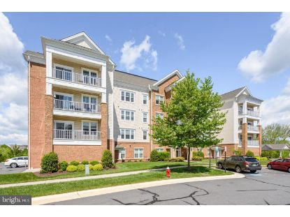 20580 HOPE SPRING TERRACE Ashburn, VA MLS# VALO437748