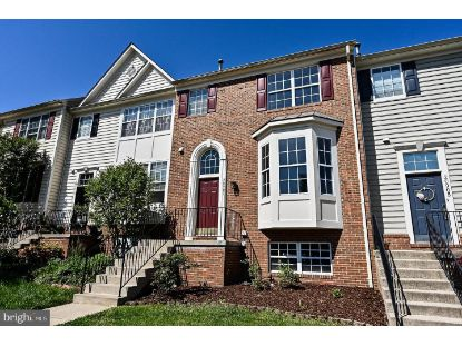20907 IVYMOUNT TERRACE Ashburn, VA MLS# VALO438346