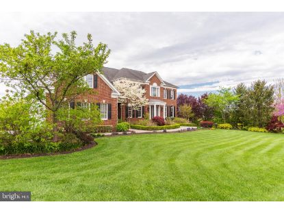 43135 MEADOW GROVE DRIVE Ashburn, VA MLS# VALO438410