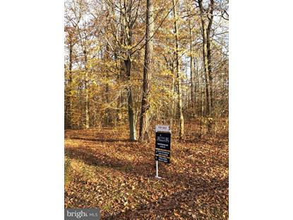 MEANDER RUN ROAD Locust Dale, VA MLS# VAMA100106