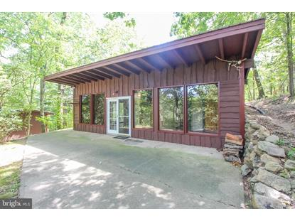 419 GRAND VIEW DRIVE Luray, VA MLS# VAPA105194