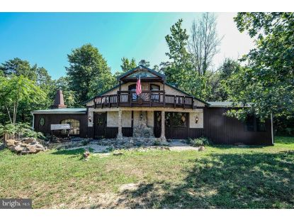 295 CROSS MOUNTAIN ROAD Luray, VA MLS# VAPA105468