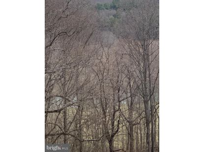 RIVER VIEW  Rileyville, VA MLS# VAPA106044