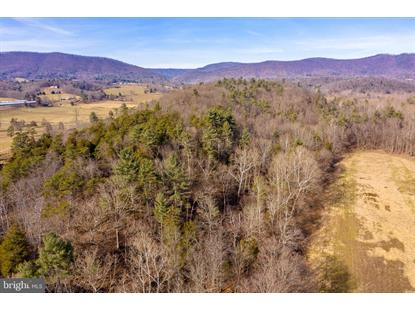 0 CRAB RUN ROAD Bergton, VA MLS# VARO101028