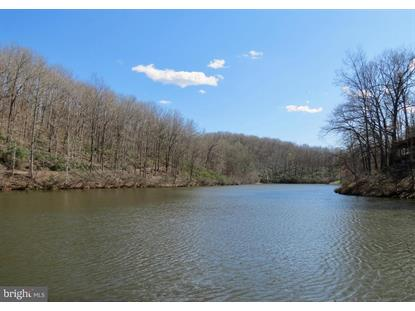 MARGES MOUNTAIN LN  Amissville, VA MLS# VARP107170