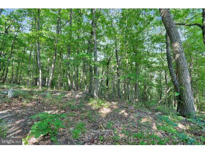 WETZEL HOLLOW LANE  Maurertown, VA MLS# VASH118152