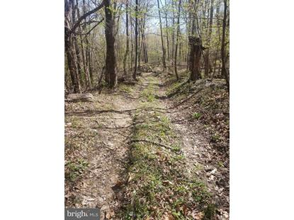 Lot 2 BACK ROAD Maurertown, VA MLS# VASH119720