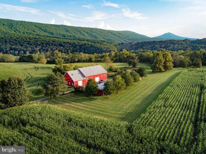 968 HOTTEL ROAD Woodstock, VA MLS# VASH120022