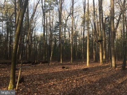 0 SMITH CREEK ROAD New Market, VA MLS# VASH121224