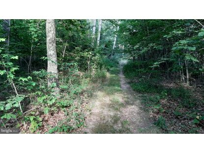 BRUSH LEAF LANE - LOTS 8 & 9  Mount Jackson, VA MLS# VASH121550