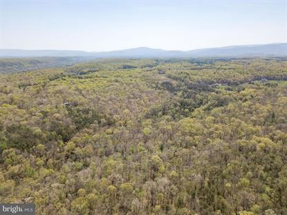 0 BUCKS MILL ROAD STRASBURG, VA MLS# VAWR139346
