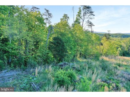 LOT 21 CREEK BEND COURT Stephens City, VA MLS# VAWR143606