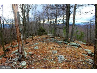 Lot 109 PEAKS VIEW DRIVE  Yellow Spring, WV MLS# WVHS115148