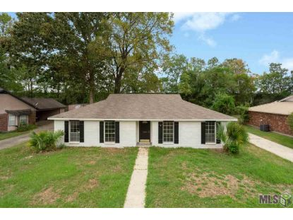 13919 DARILYN DR  Baton Rouge, LA MLS# 2020015035