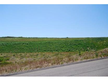 Lot 122 Madison Heights  Cranberry Township, PA MLS# 1360686