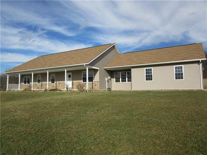 158 White Tail Ln  Stoystown, PA MLS# 1375613