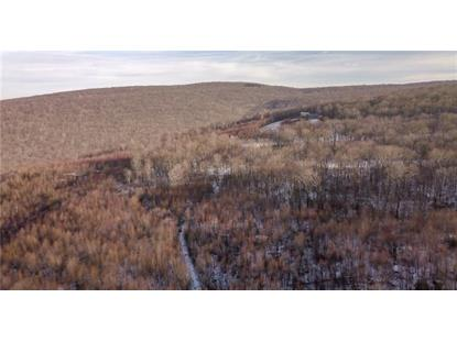 Lot 9 Bluffs Trail  Somerset, PA MLS# 1375753