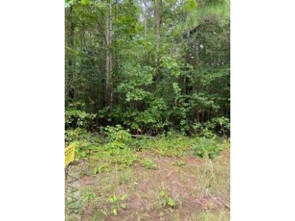 0 Hardy Cemetery Road Macon, NC MLS# 101200