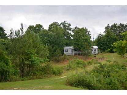 4380 County Road 205  Troy, AL MLS# 169601