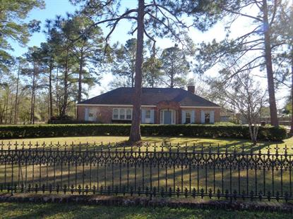 108 Solomon Rd  Headland, AL MLS# 172282