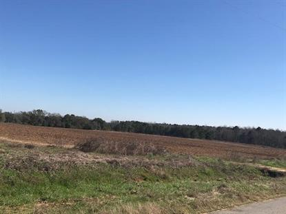 0 County Road 11  Headland, AL MLS# 172289