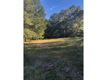 955 County Road 549  Newton, AL MLS# 180544