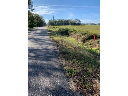 00 Peach Farm Rd  Ashford, AL MLS# 180760