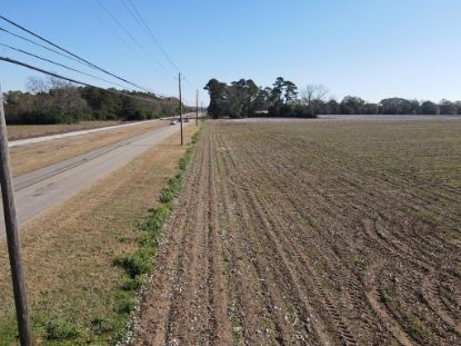 134 State Hwy 134  Midland City, AL MLS# 181232