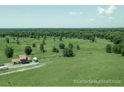 7815 Golden Isles Parkway  Mc Rae, GA MLS# 135340