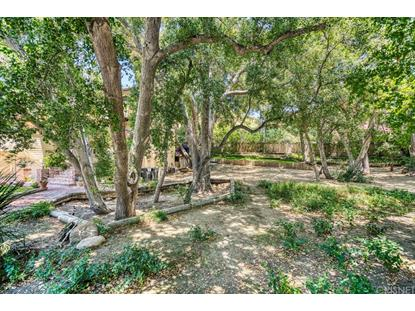 23711 LA SALLE CANYON ROAD Newhall, CA MLS# SR19137080