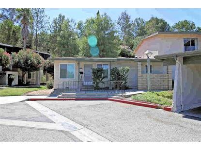 19710 SPANISH OAK DRIVE Newhall, CA MLS# SR19218799