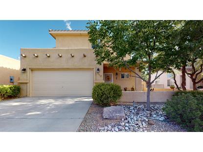1112 CASA TOMAS Road NE Albuquerque, NM MLS# 972345