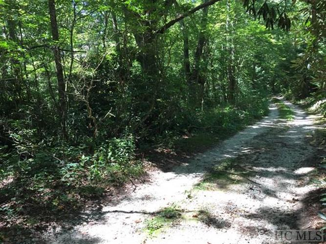 000 Pines Road, Scaly Mountain, NC 28775 - Image 1