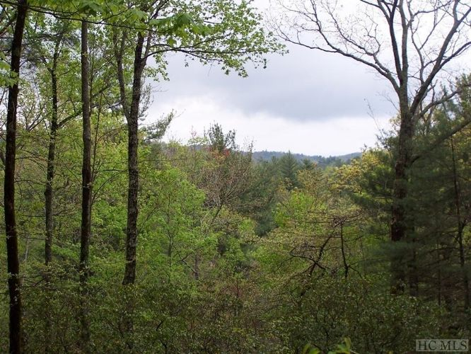 Lot 10 Deep Ford Falls, Lake Toxaway, NC 28747 - Image 1