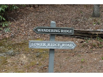 Lot 22 Wandering Ridge  Cashiers, NC MLS# 92676