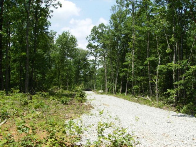 27.1 AC. West View Road, Spencer, TN 38585 - Image 1
