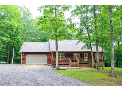 225 Fanny Cook Road  Wilder, TN MLS# 192419