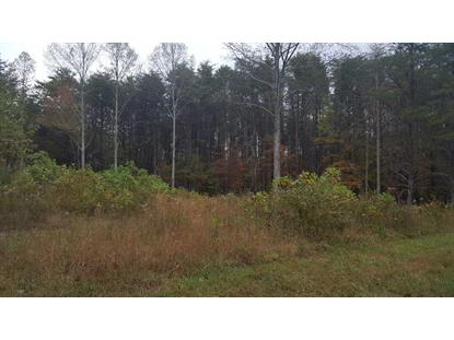 00+01 Mooneyham Lonewood Rd  Spencer, TN MLS# 194612