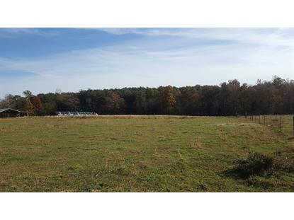 703 Baker Mountain Road  Spencer, TN MLS# 194849