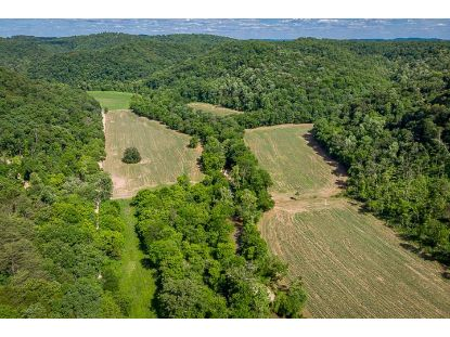 402.9 Ac McFarland Road  Celina, TN MLS# 197186