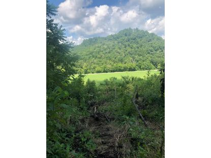 814 Keeling Branch Hwy  Whitleyville, TN MLS# 198897