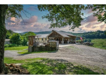 1271 OLD COUNTY FARM ROAD  Spencer, TN MLS# 199041