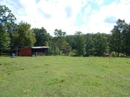 Lot 5 Yellow Cliff Creek Road  Sparta, TN MLS# 199124