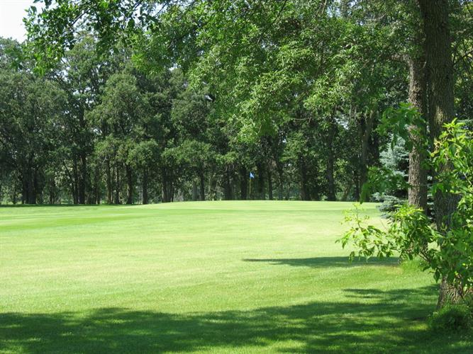Lot 4 Blk2 285th Street, Battle Lake, MN 56515 - Image 1